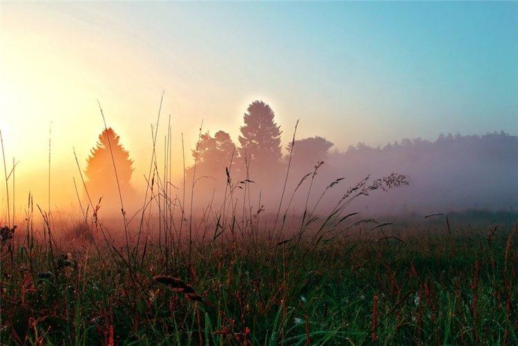 19 апреля «Утро туманное…»