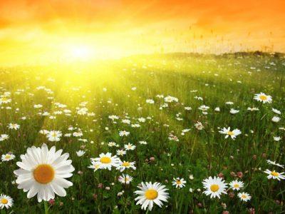 31 мая «Завтра Лето!»