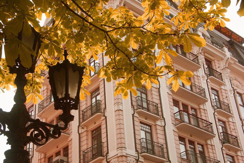 Листья желтые над городом кружатся…