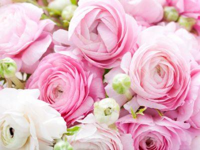 3 марта«Для милых, нежных, дорогих…»