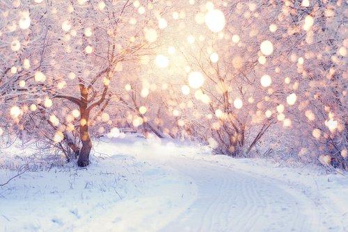 3 февраля «У ворот снеговорот»