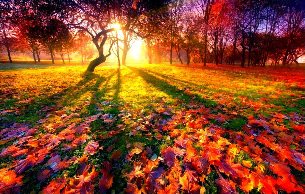 3 ноября  Концертная программа «Осенний марафон»