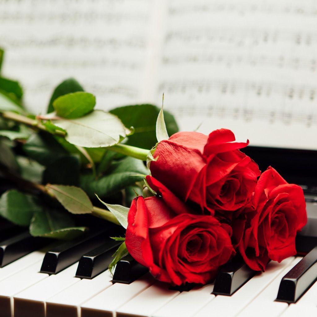 8 декабря Концертная программа «А любовь, как песня…»