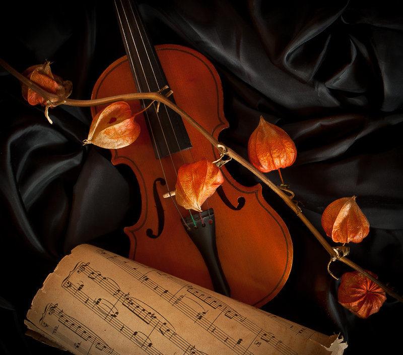 18 января  Концертная программа  «Тайные истории великих музыкальных шедевров»