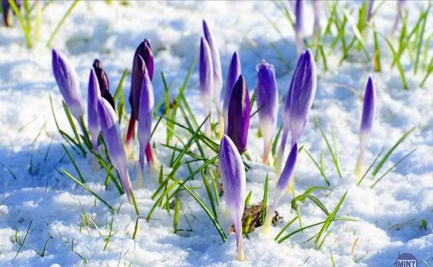 29 февраля Концертная программа «В предчувствии Весны!»